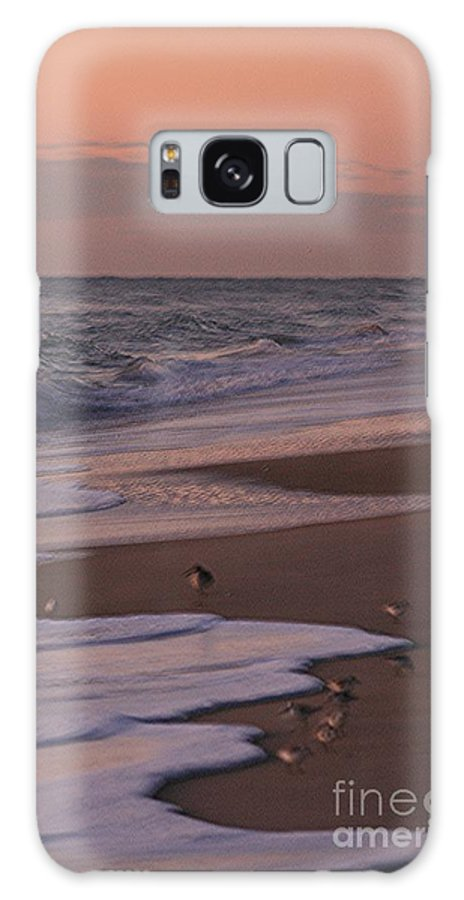 Beach Galaxy Case featuring the photograph Morning Birds At The Beach by Nadine Rippelmeyer