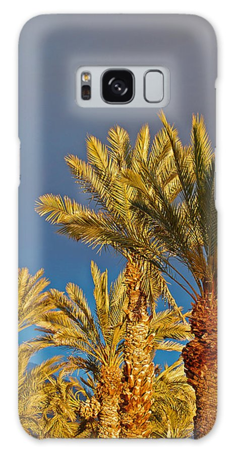 Palm Galaxy S8 Case featuring the photograph Morning Light Palms by Jean Booth