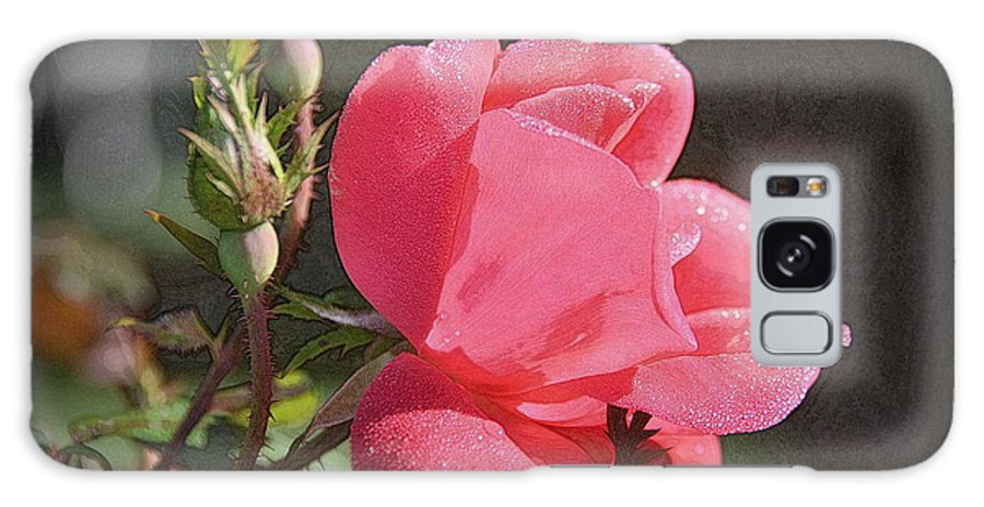 Rose Galaxy S8 Case featuring the photograph Morning Rose by Dave Wangsness