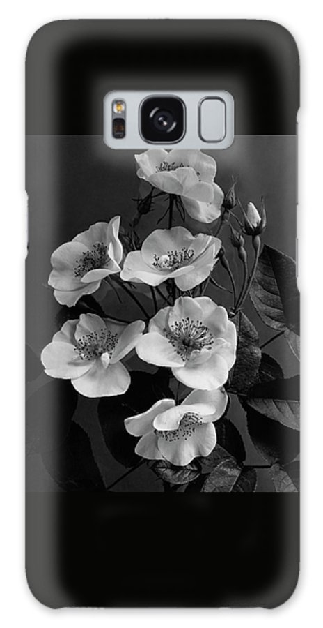 Flowers Galaxy S8 Case featuring the photograph Moschata Alba by J. Horace McFarland