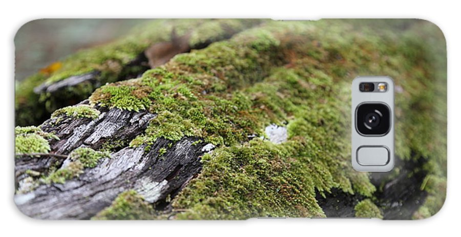 Moss Galaxy S8 Case featuring the photograph Mossy Log by Keith Hawley