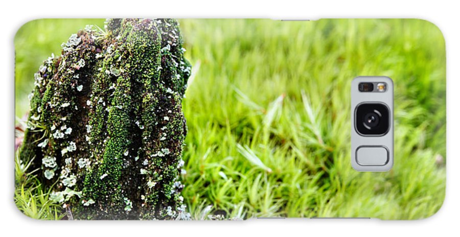Moss Galaxy S8 Case featuring the photograph Mossy Outcrop by Jo Ann Snover