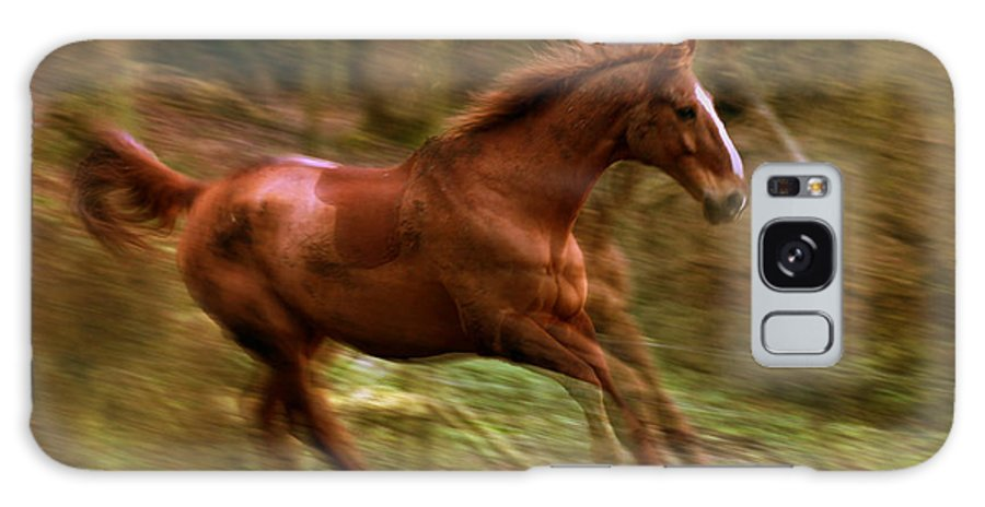 Horse Galaxy S8 Case featuring the photograph Motion Picture by Angel Ciesniarska