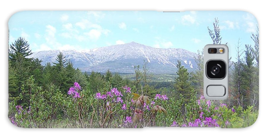 Mount Katahdin Galaxy S8 Case featuring the photograph Mount Katahdin And Wild Flowers by Joseph Marquis
