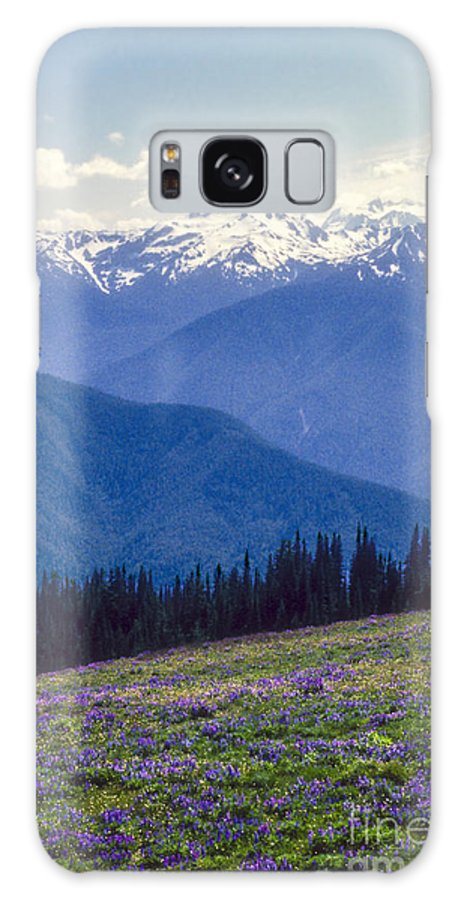 Olympic National Park Washington Parks Tree Trees Forest Forests Nature Landscape Landscapes Mountain Mountains Peak Peaks Snow Flower Flowers Wildflower Wildflowers Galaxy S8 Case featuring the photograph Mountain Color And Snow by Bob Phillips