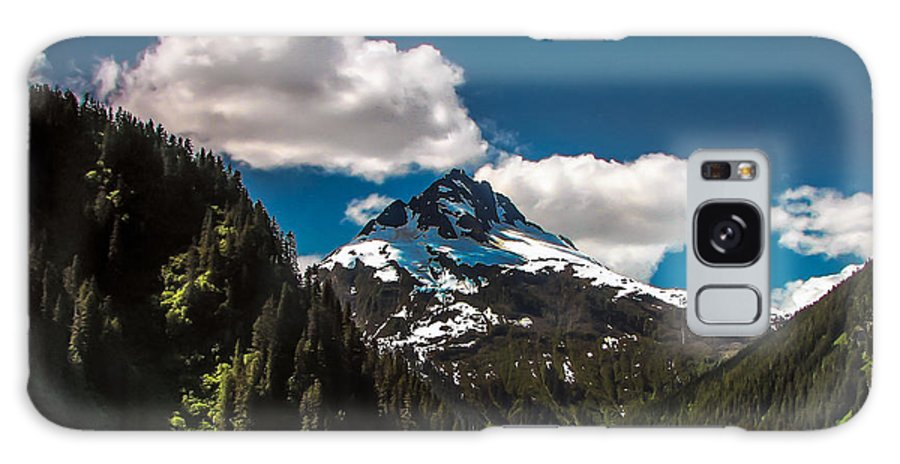 Alaska Galaxy S8 Case featuring the photograph Mountain View by Robert Bales
