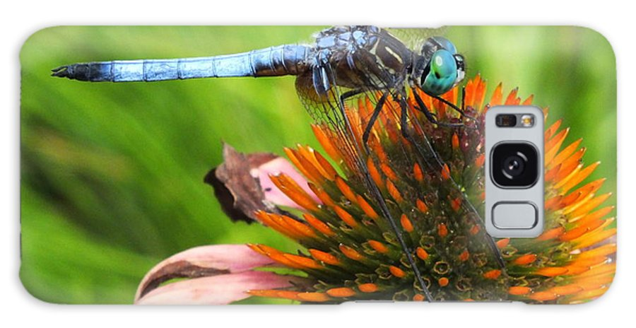 Dragonfly Galaxy S8 Case featuring the photograph Mr. Blue Dasher by Amy Perry