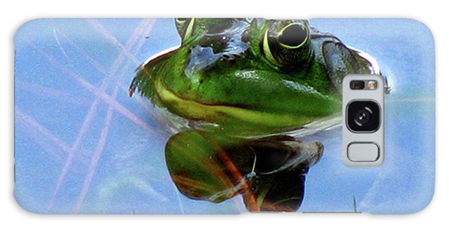 Frog Galaxy S8 Case featuring the photograph Mr. Frog by Donna Brown