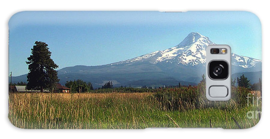 Mt Hood Galaxy S8 Case featuring the photograph Mt Hood Panorama by Charles Robinson