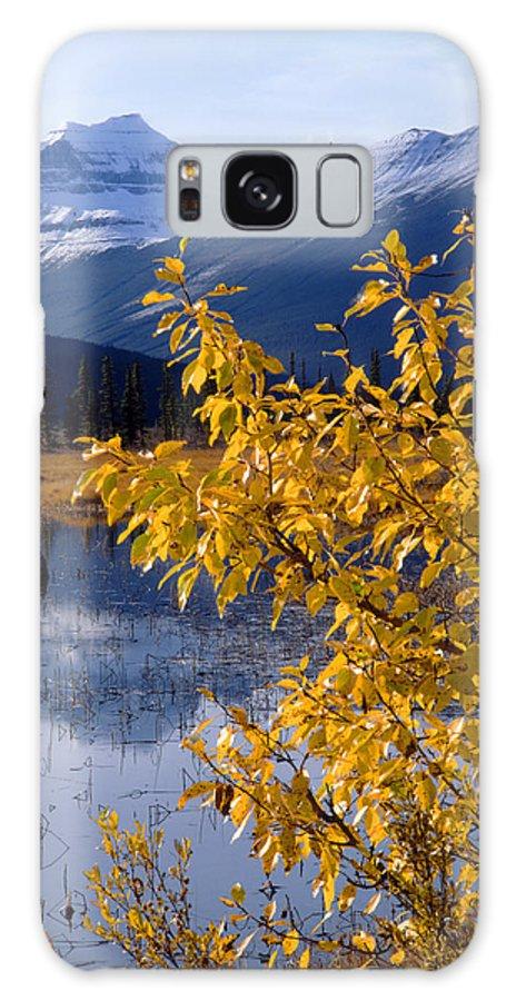 Mt. Saskatchewan Galaxy S8 Case featuring the photograph 1m3626-mt. Saskatchewan In Fall by Ed Cooper Photography