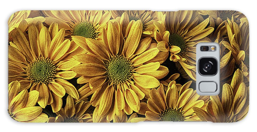 Beautiful Galaxy S8 Case featuring the photograph Mums Bunch by Garry Gay