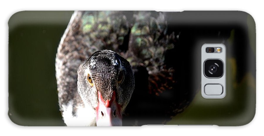 Muscovy 14-2 Galaxy S8 Case featuring the photograph Muscovy 14-2 by Maria Urso