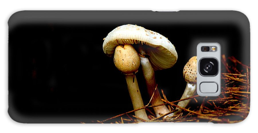 Mushroom Galaxy S8 Case featuring the photograph Mushroom 1 by Frank Selvage
