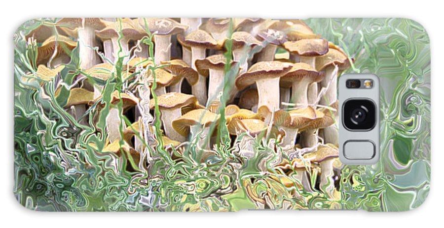 Mushroom Galaxy Case featuring the photograph Mushroom Gold by Albert Stewart