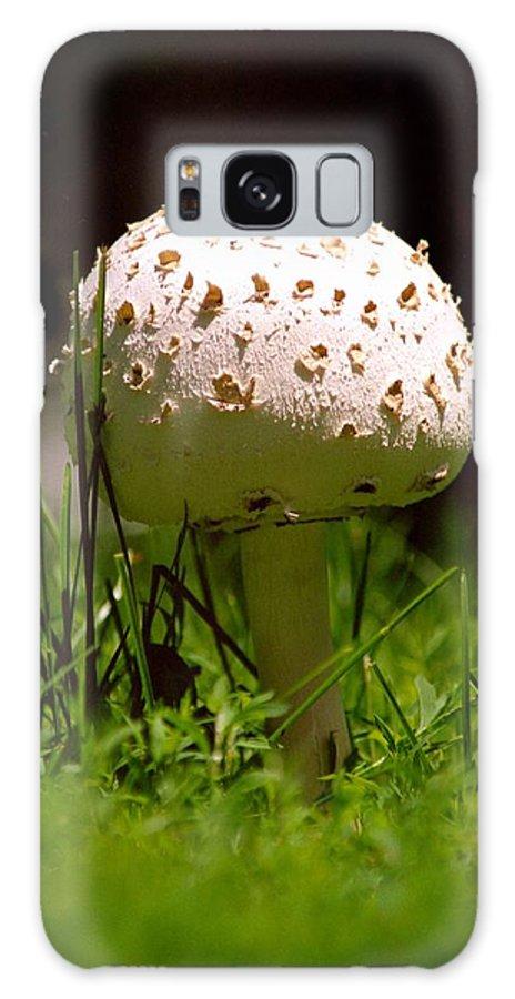 Mushroom; Nature; Plant Galaxy S8 Case featuring the photograph Mushroom by Lonnie Paulson