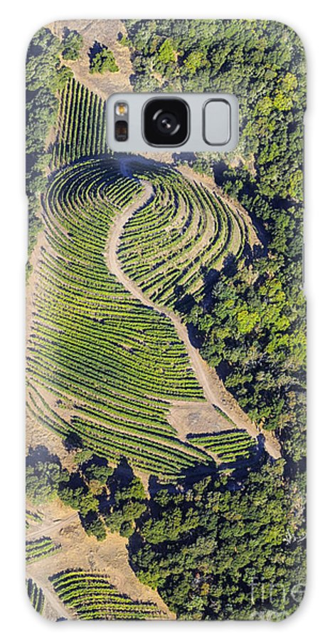 Napa Valley California Winery Wineries Row Rows Vineyard Vineyards Landscape Landscapes Tree Trees Grape Vine Vines Galaxy S8 Case featuring the photograph Napa Valley From Above by Bob Phillips