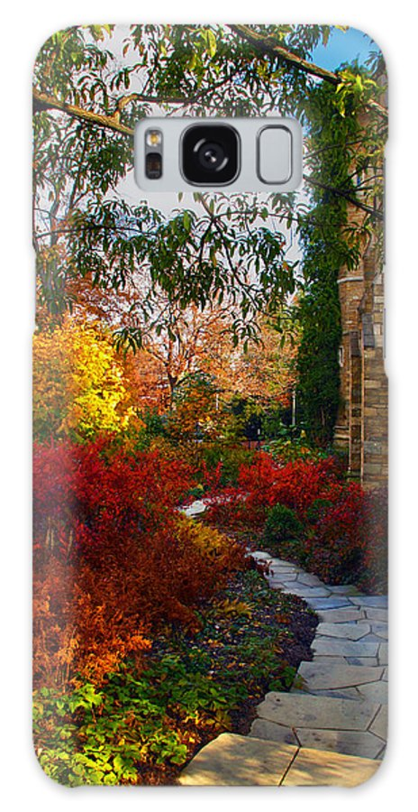 National Cathedral Galaxy Case featuring the photograph National Cathedral Path by Mitch Cat