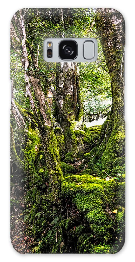 Ireland Galaxy S8 Case featuring the photograph Natural Emeralds. I Wicklow. Ireland by Jenny Rainbow