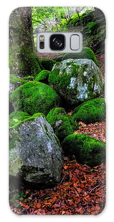 Ireland Galaxy S8 Case featuring the photograph Natural Emeralds. Wicklow. Ireland by Jenny Rainbow
