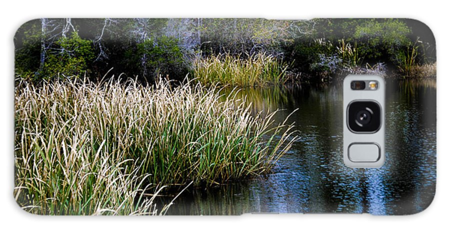 Uwf Galaxy S8 Case featuring the photograph Nature Walk 2 by Jon Cody