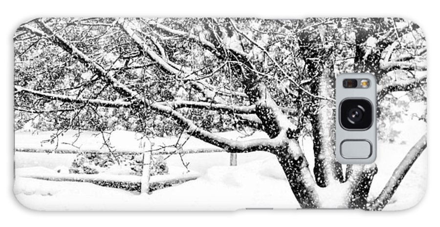 Snow Galaxy Case featuring the photograph Natures Black And White by Rennae Christman