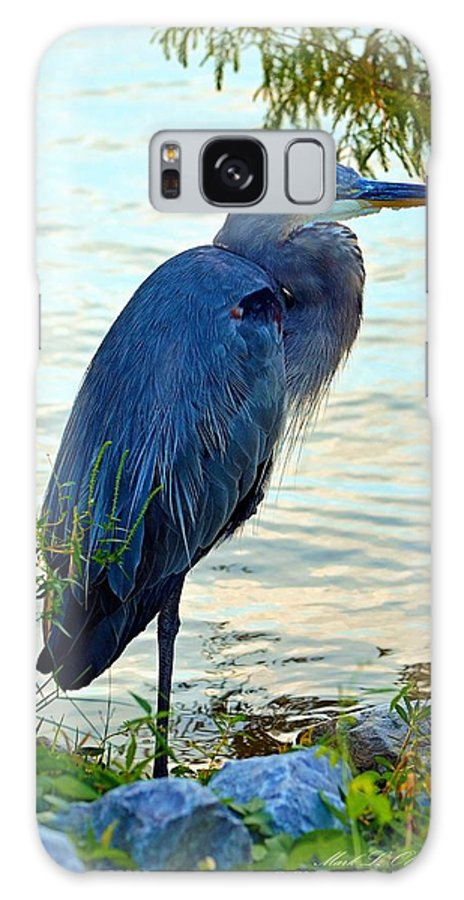 Great Galaxy S8 Case featuring the photograph Navarre Gbh I Mlo by Mark Olshefski