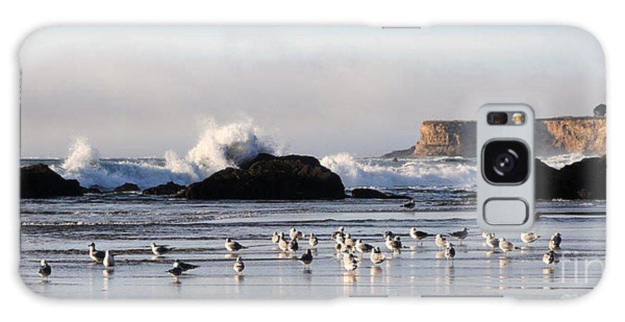 Beach Galaxy S8 Case featuring the photograph Near Bowling Ball Beach by Vivian Christopher