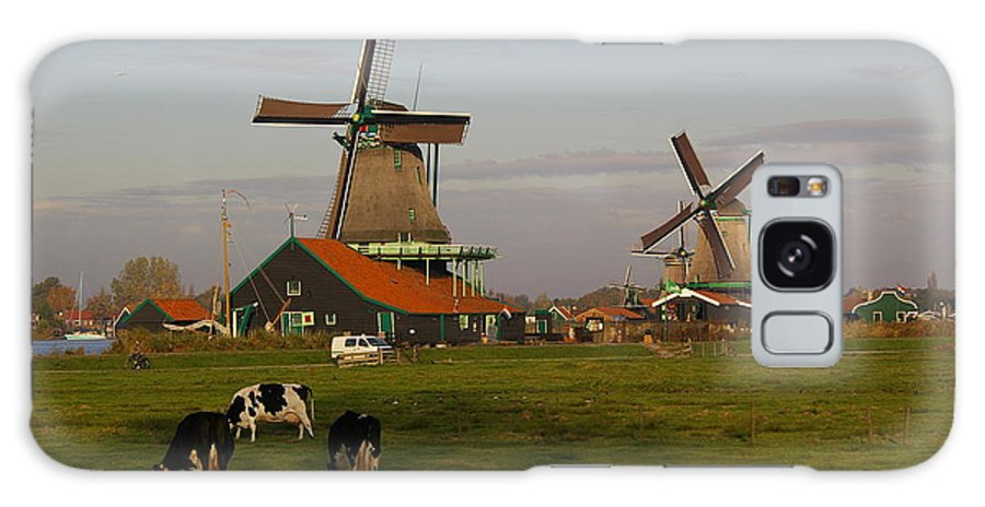 Cows Galaxy S8 Case featuring the pyrography Netherlands by Fernanda Caleffi Barbetta