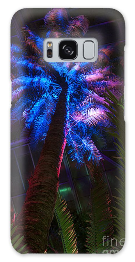 Palm Tree Galaxy S8 Case featuring the photograph New Age Tropical Palm by Darleen Stry