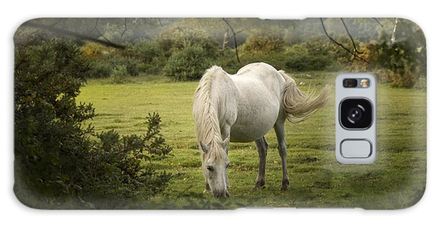 New Forest Galaxy S8 Case featuring the photograph New Forest Pony by Angel Ciesniarska