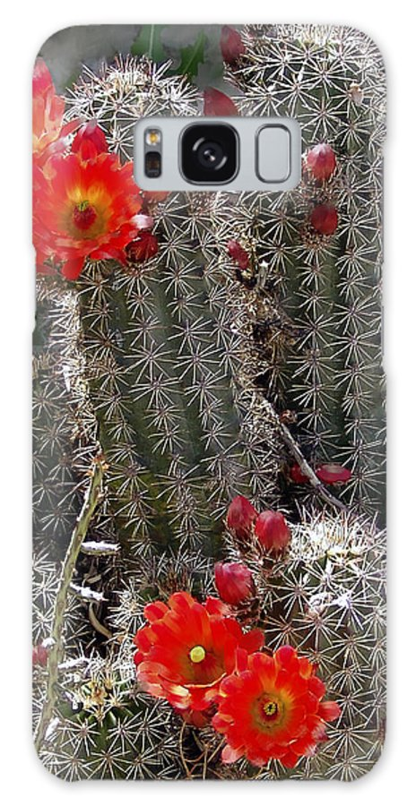 Cactus Galaxy S8 Case featuring the photograph New Mexico Cactus by Kurt Van Wagner