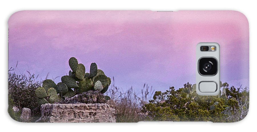 Cacti Galaxy S8 Case featuring the photograph New Mexico Sunset With Cacti by Jean Noren