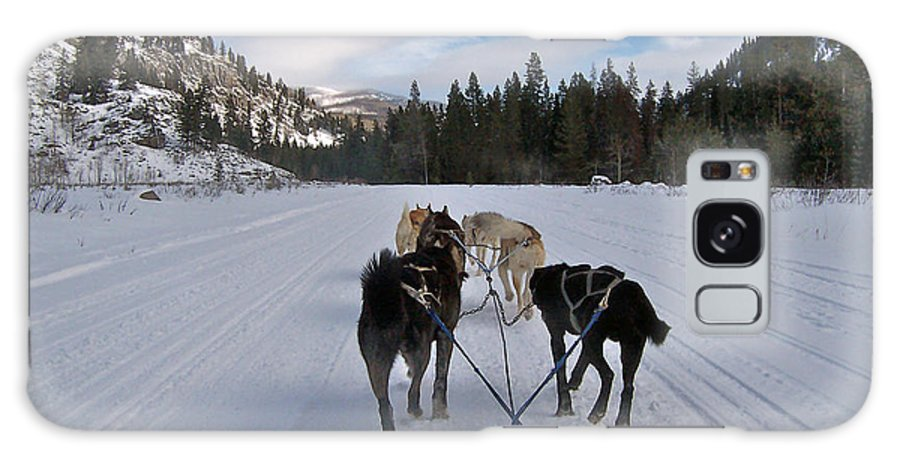 Dog Galaxy S8 Case featuring the photograph Riding Through The Colorado Snow On A Husky Pulled Sled by Toula Mavridou-Messer