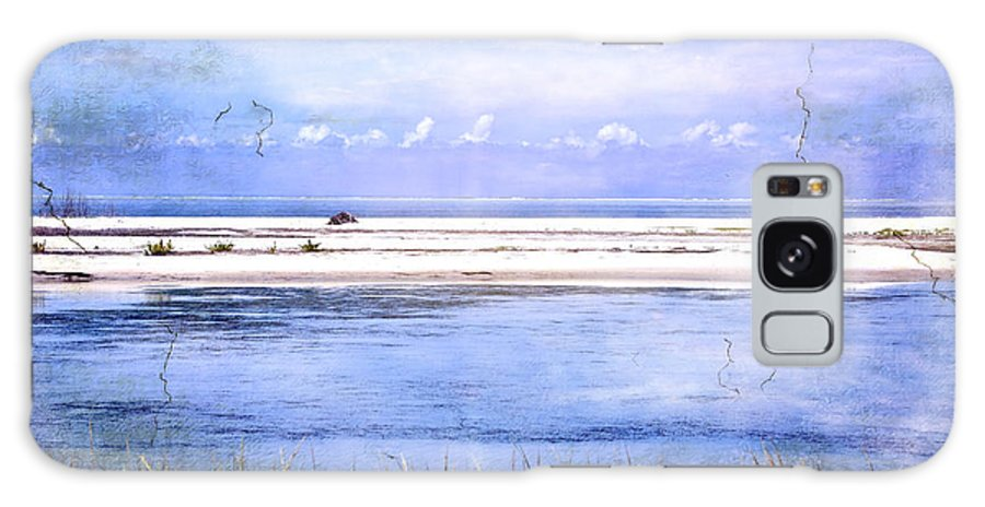 Fort De Soto Galaxy S8 Case featuring the photograph North Beach by Eagle Finegan