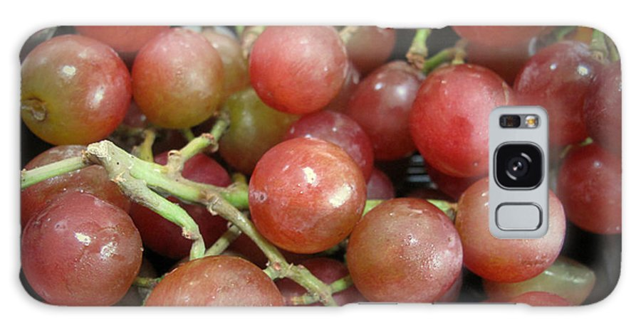 Grapes Galaxy S8 Case featuring the photograph Not Sour Grapes by Barbara McDevitt