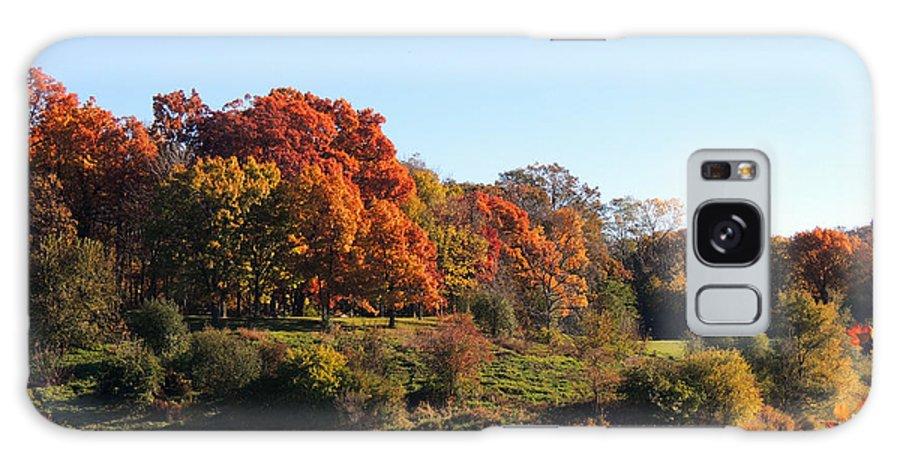 Autumn Galaxy S8 Case featuring the photograph November Morning by Teresa Schomig