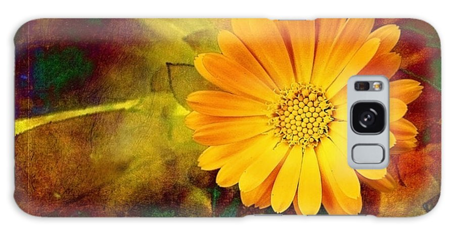 Autumn Galaxy S8 Case featuring the photograph October Zinnia by Ellen Cotton