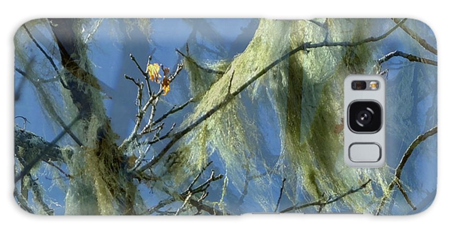 Old Man's Beard Fungus Galaxy S8 Case featuring the photograph Old Man's Beard Maple by Lyn Perry