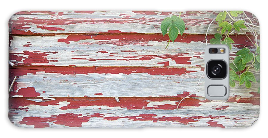 Old Galaxy S8 Case featuring the photograph Old Red Barn With Peeling Paint And Vines by Jit Lim