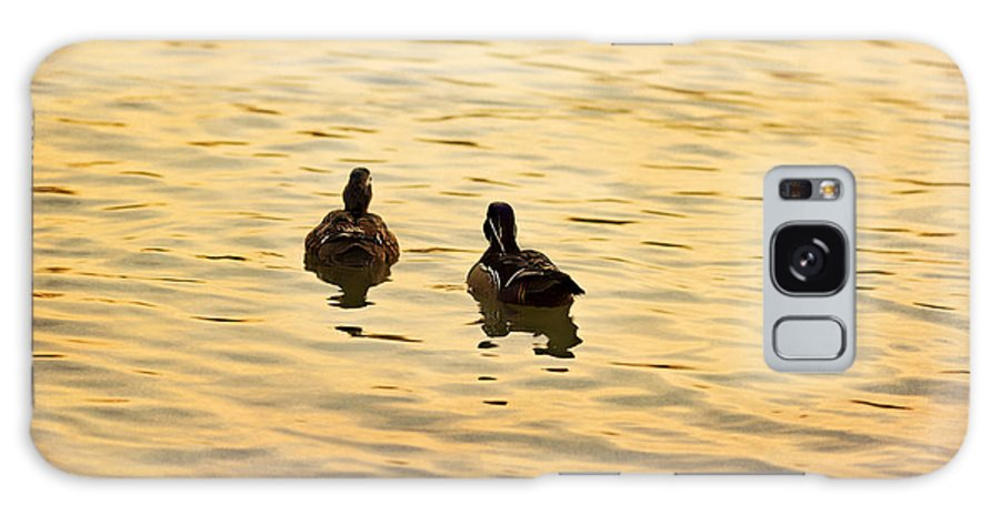 Texture Galaxy S8 Case featuring the photograph On Golden Pond Ducks by Angela Stanton