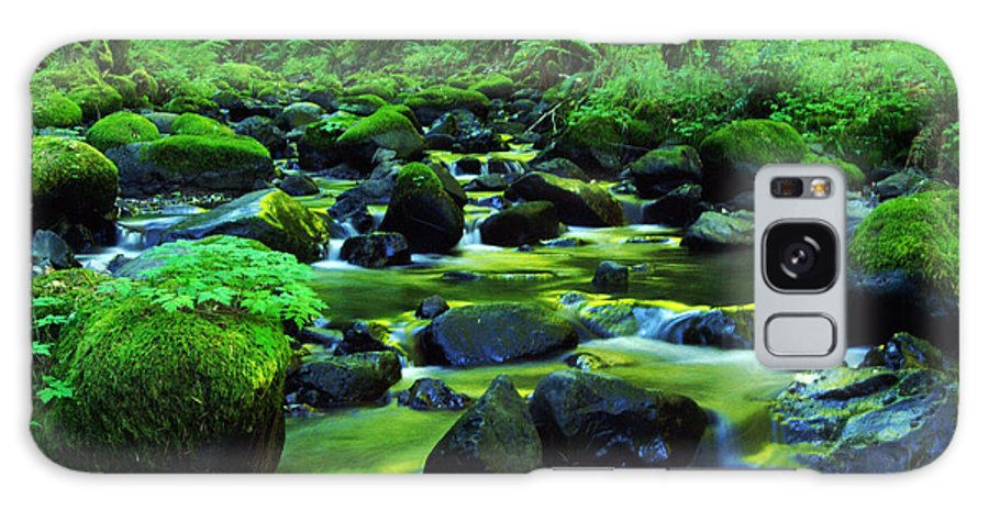 Oregon Streams Galaxy S8 Case featuring the photograph On Golden Waters by Jeff Swan