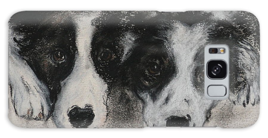 Border Collie Galaxy S8 Case featuring the drawing On The Border by Cori Solomon