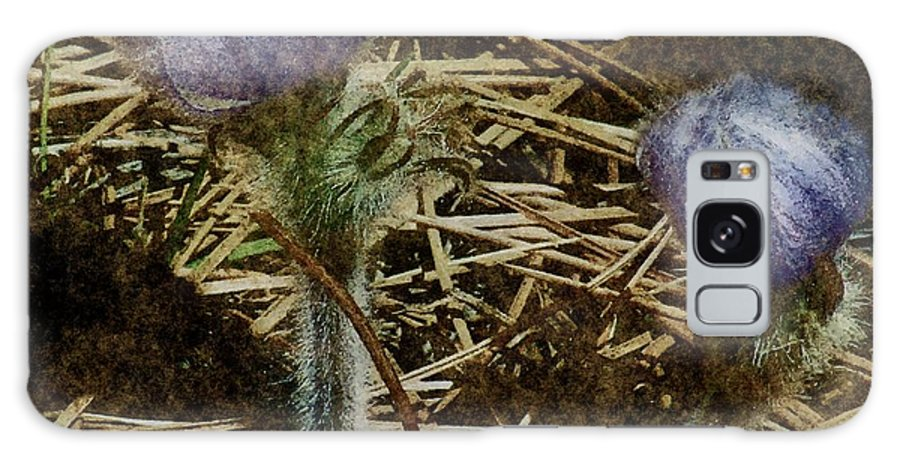 Colorado Galaxy S8 Case featuring the painting On The Forest Floor by RC DeWinter