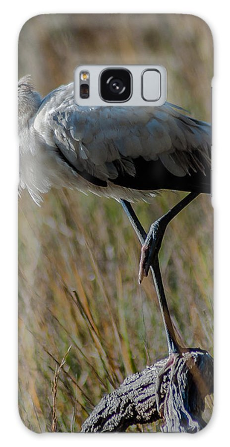 Wood Stork Galaxy S8 Case featuring the photograph One Leg by Charles Moore