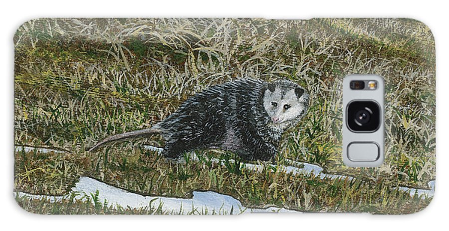 Opossum Galaxy S8 Case featuring the painting Opossum by Lucinda V VanVleck