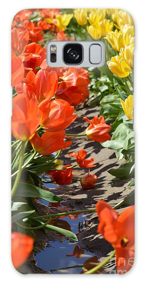 Landscape Galaxy S8 Case featuring the photograph Orange And Yellow Tulips by Jan Noblitt