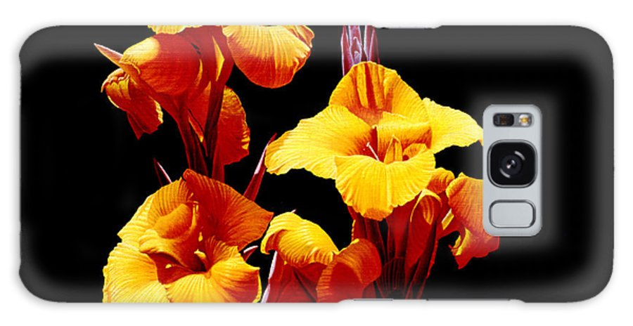Yellow Cannas Galaxy S8 Case featuring the painting Orange Cannas by Gary Hernandez