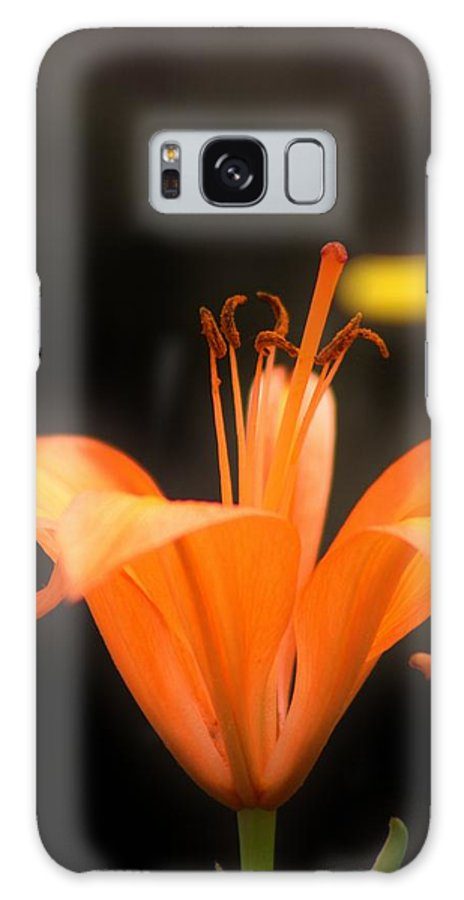 Flowers Galaxy S8 Case featuring the photograph Orange Lily by Tami Rounsaville