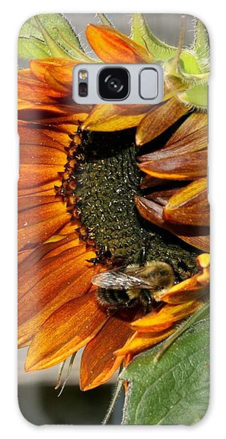 Sunflower Galaxy S8 Case featuring the photograph Orange Sunflower And Bee by Susan McMenamin