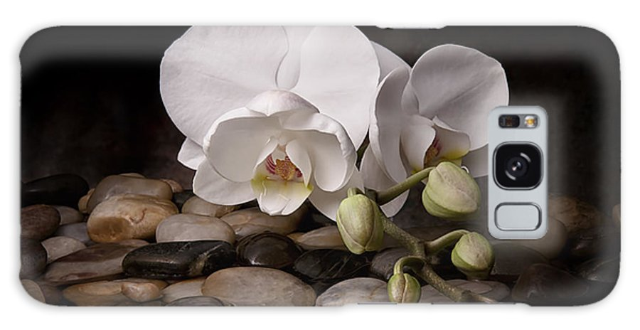 Arrangement Galaxy Case featuring the photograph Orchid - Sensuous Virtue by Tom Mc Nemar
